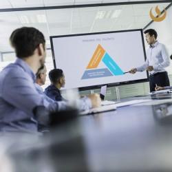 Programa Especializado en PMO Estratégica: Gestión de Portafolios